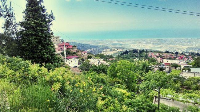İskenderun Akdeniz Yesillikler Doğa Temiz Hava Misss harika bir gün Wonderful Nature Wonderful Day