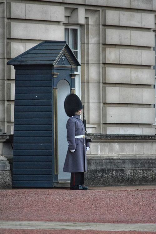 Guardsman Guard One Person Full Length Outdoors Day Real People Building Exterior Built Structure Rear View Adult Buckingham Palace Guard House On Duty Soldier Bearskinhat Duty Standing To Attention London Travel Tourism City