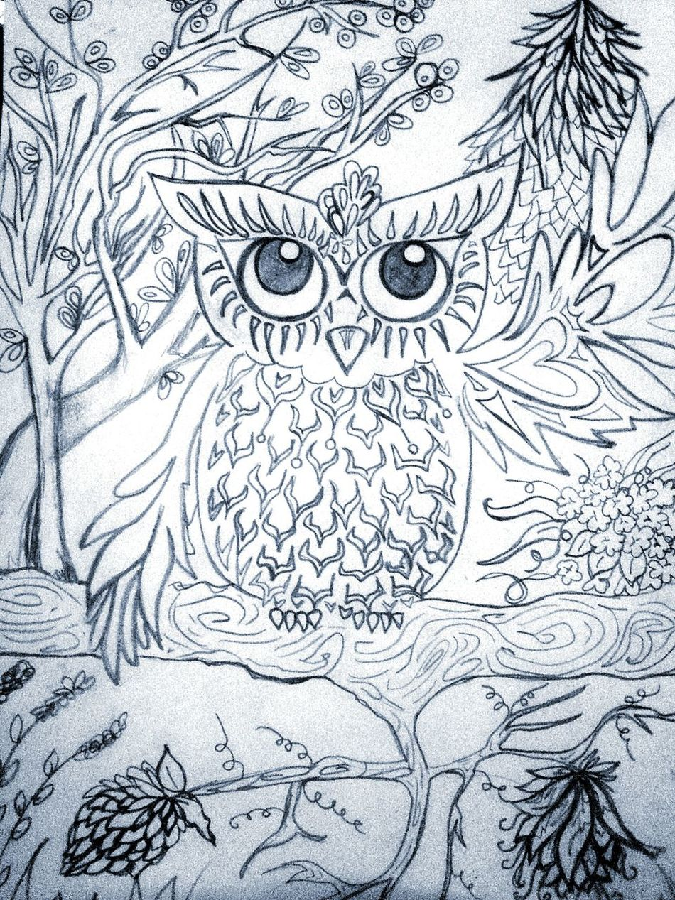 Artbyme Adult Coloring Book Creativity Pencil Drawing Love ArtWork Feathers Owlart What's Next? Wise Guy