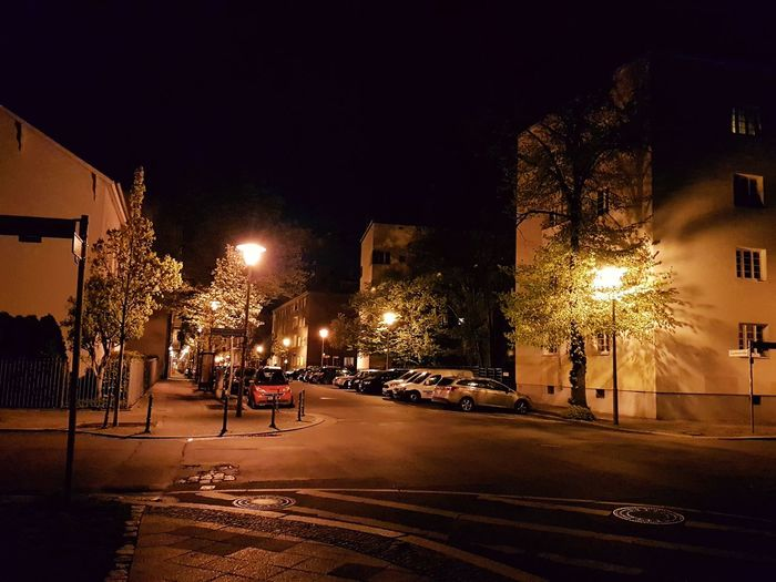 Night Illuminated Street Outdoors City People Spraying Adult