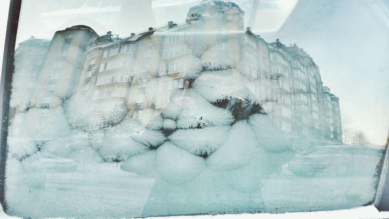 Wintertime Winter Window Carwindow Frosty Frost Pattern Pattern Pattern Pieces Patterns Everywhere Reflection