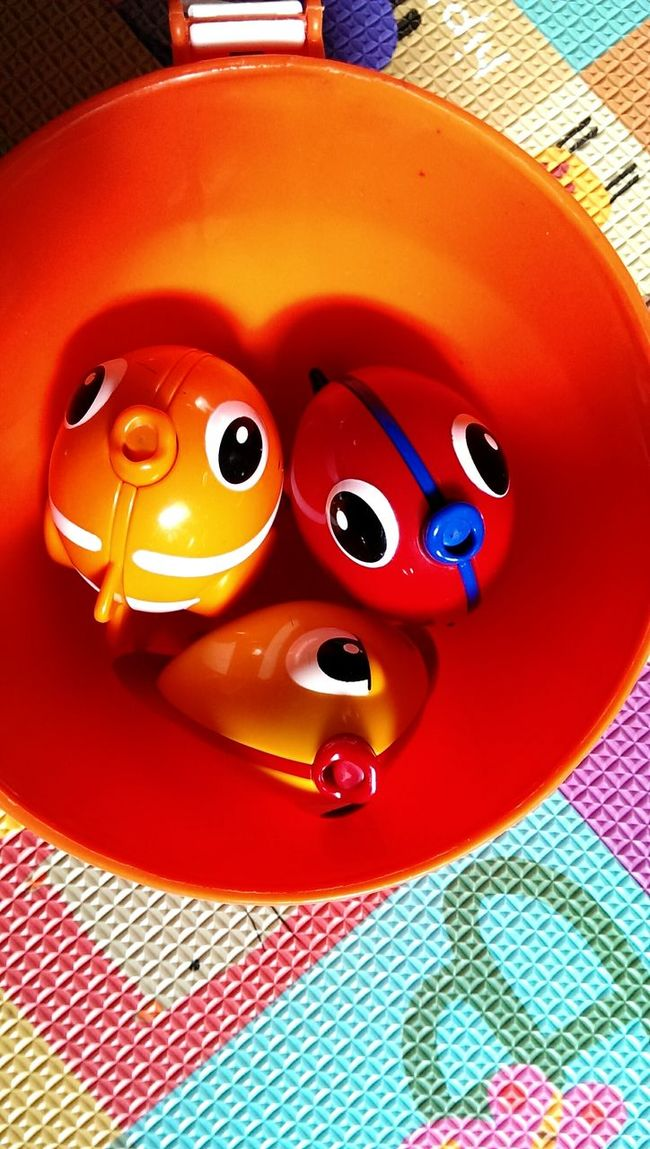 Everyday Joy Toys4Tots Fish Light Hearted