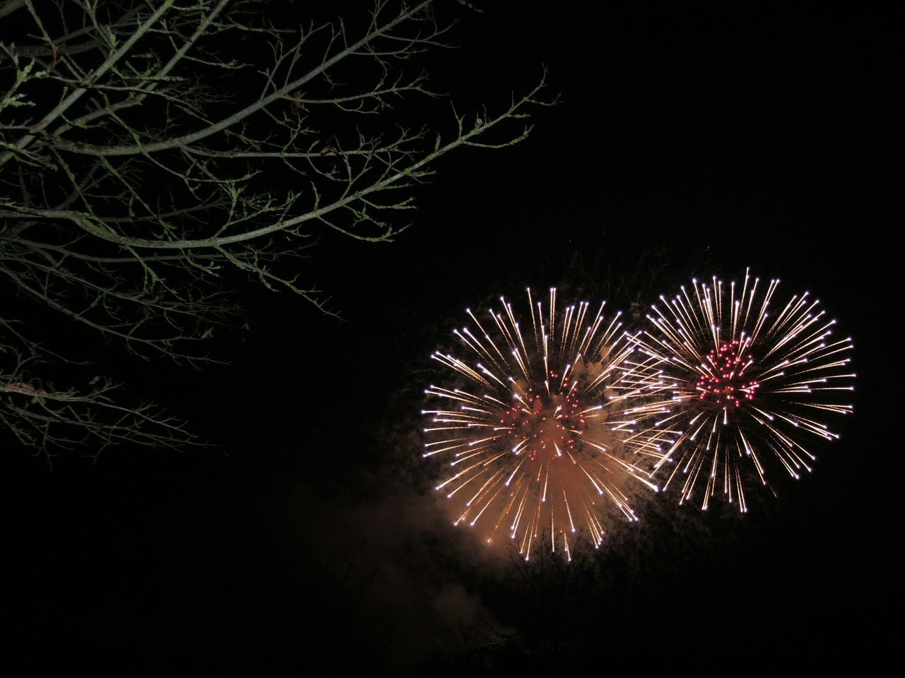 night, firework display, firework - man made object, no people, celebration, low angle view, long exposure, outdoors, illuminated, sky, animal themes
