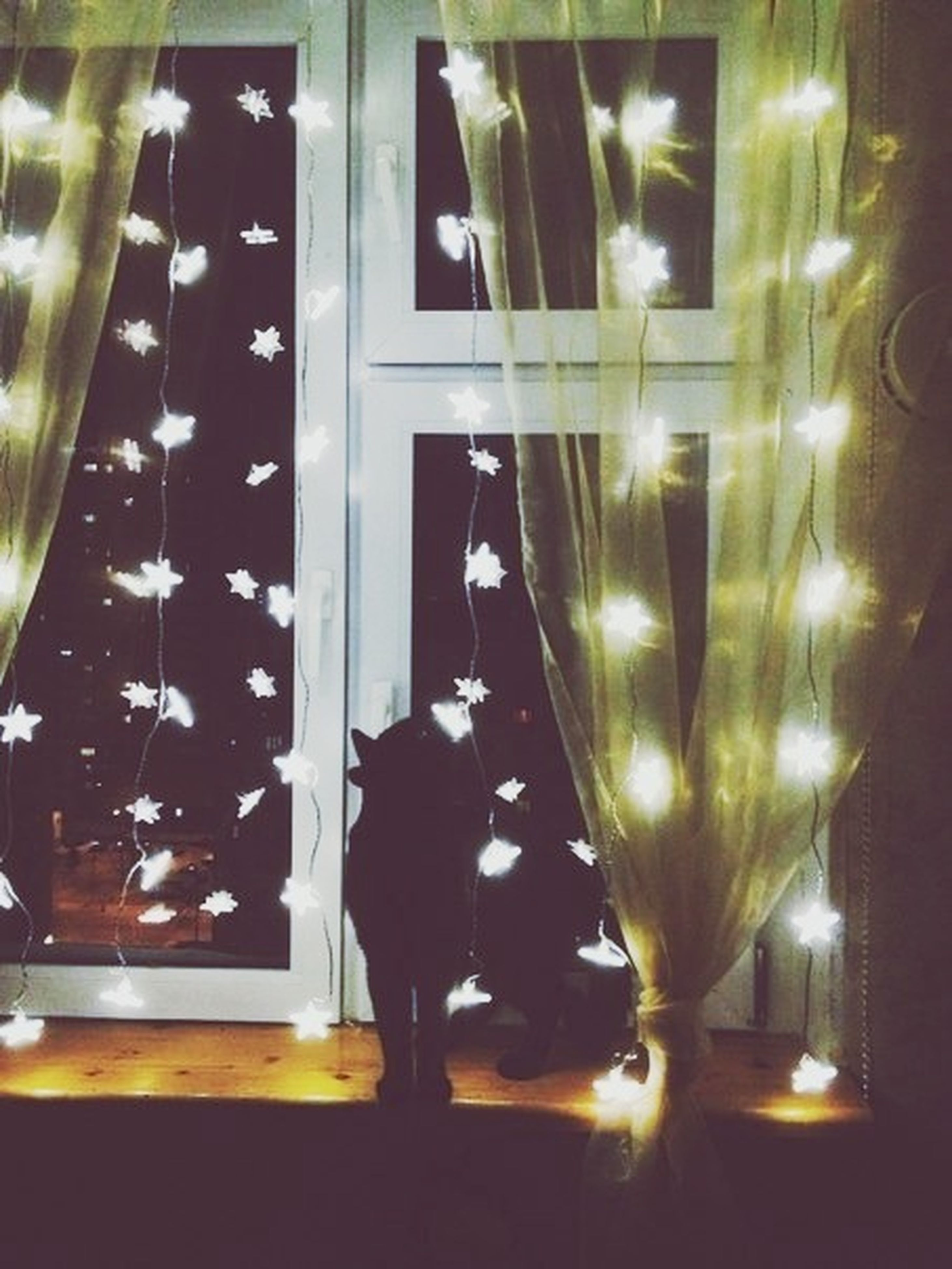 indoors, window, illuminated, glass - material, home interior, curtain, transparent, silhouette, standing, lighting equipment, full length, rear view, lifestyles, night, reflection, sunlight, dark, person