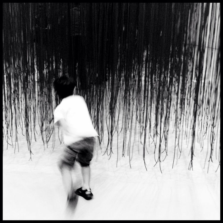 blackandwhite at Hirshhorn Museum And Sculpture Garden by Maddy McCoy
