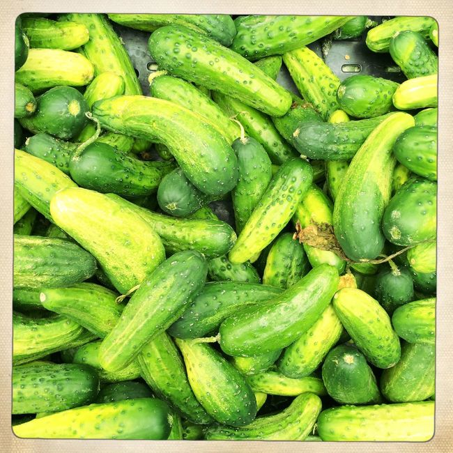Pickles. Vegetables Delicious Food EyeEm Best Shots Fresh Produce Farmers Market Green Natural