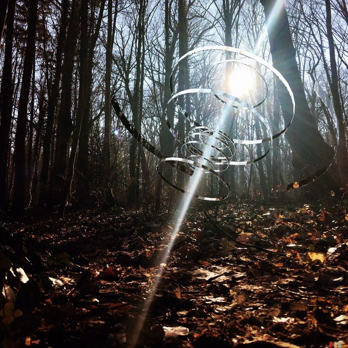 🌀 circle of light Circleoflight Circleoflife Circle Circular Sunbeam Tree Forest Nature Sun Shiny No People Day Outdoors Lens Flare Sunlight Treptower Park Berliner Ansichten Berlin Photography Beauty In Nature Surrealist Art Surrealism VisualArt  Eyeemartgallery