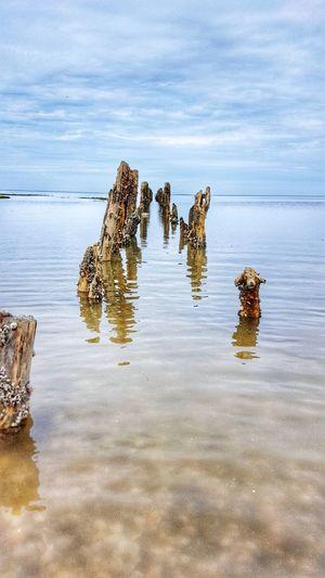 Reflection Water Beauty In Nature Nature Horizon Over Water Sea Meer Seaside North Sea Carolinensiel Strand Tide Watt High Tide Flut Flood Beach Wood Holzpöhler