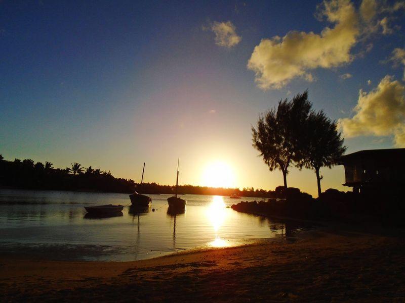 Mauritius Silhouette Sunset Water Reflection Sky Tree Scenics