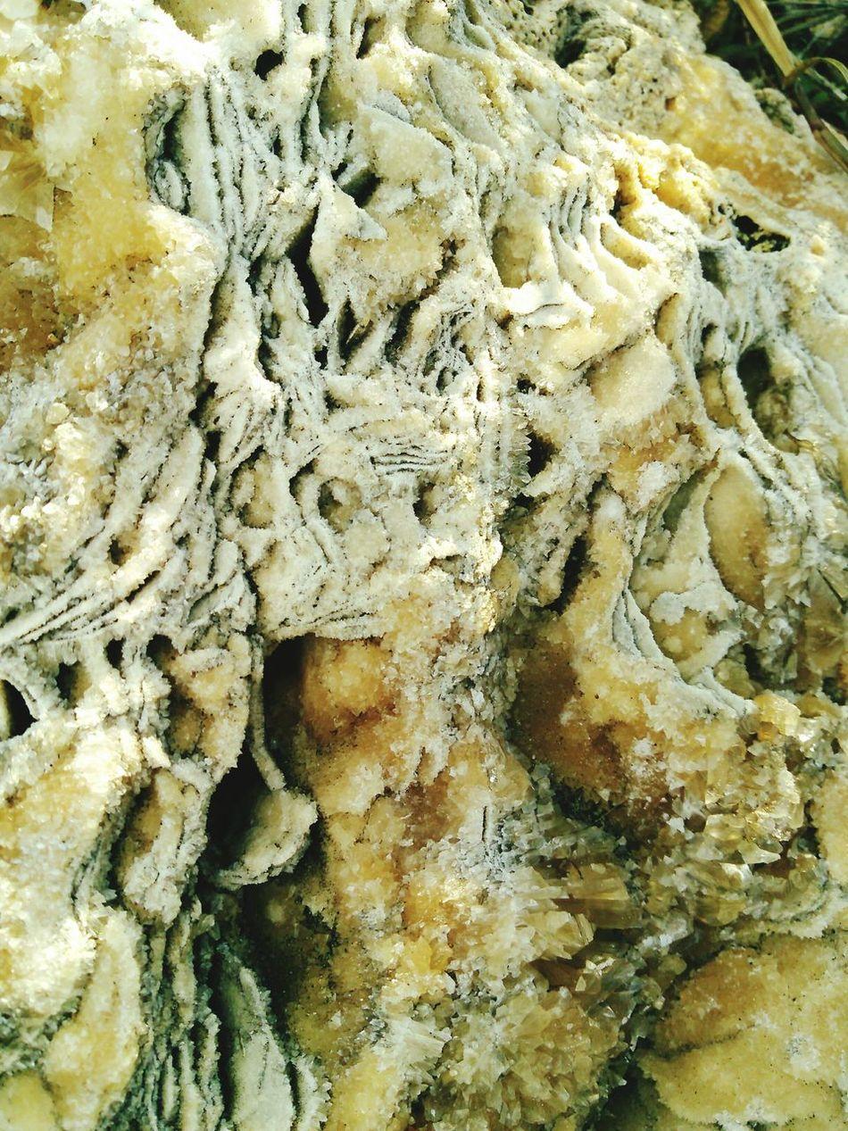 Hidden Secrets of Port Aransas Gulf Of Mexico Beautiful Crystal Boulder Real Shots Photogrqphs