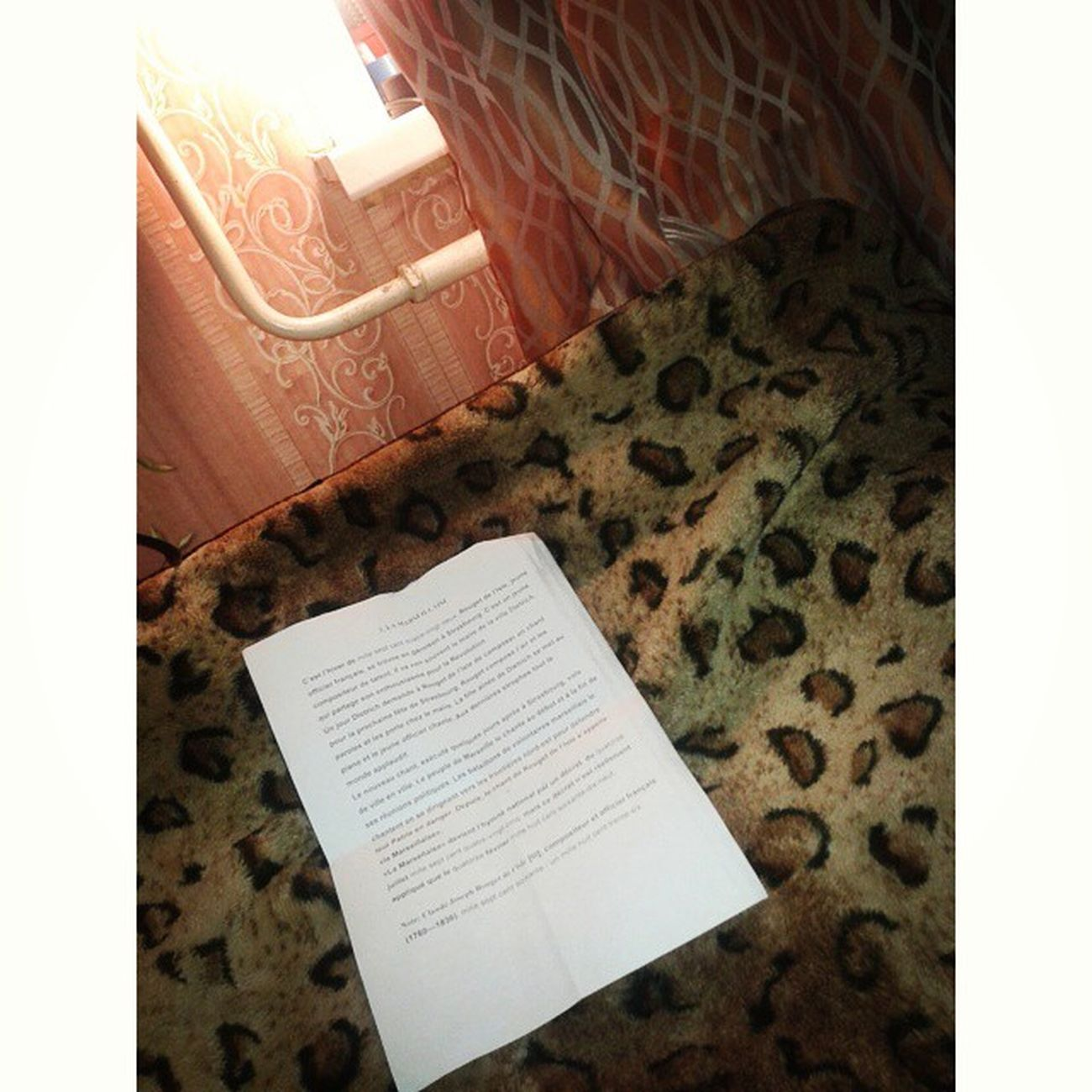 Кто то спит, а у меня зачетный текст по французскому ппцкакхочубаеньки
