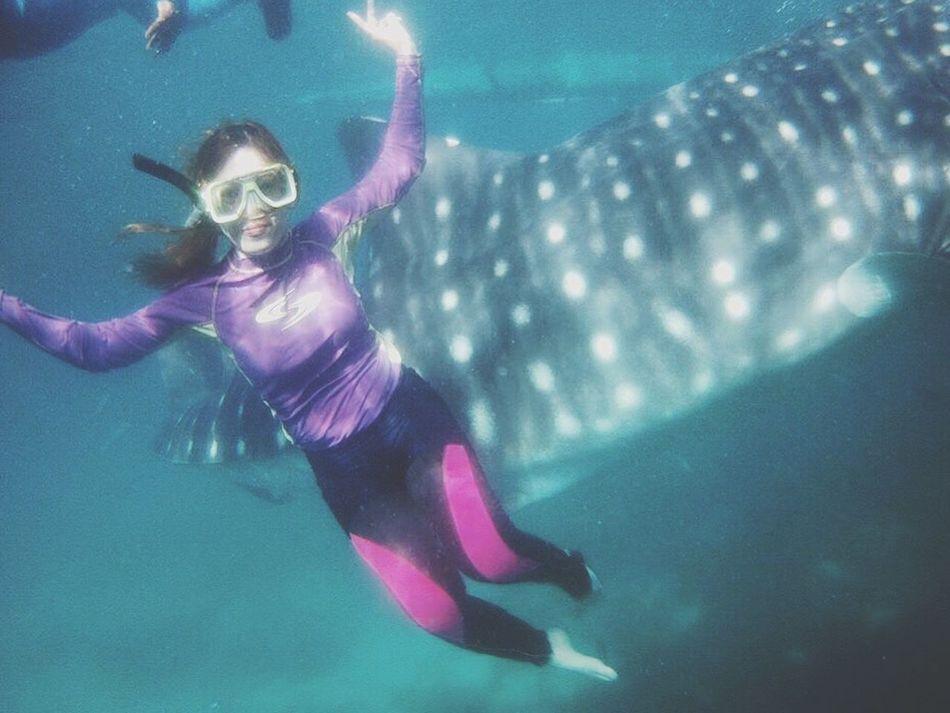 The Great Outdoors - 2016 EyeEm Awards Underwater Dive Diving Swimming Whsleshark Water Ocean Blue