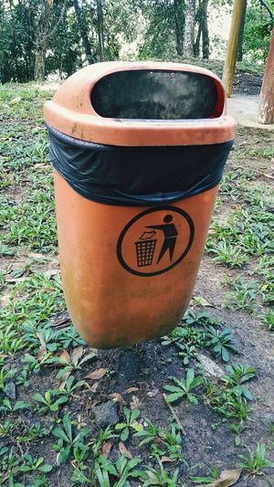 Day No People High Angle View Outdoors Growth Plant Nature Close-up Trashbin Bin Orange Color Keep Clean Park