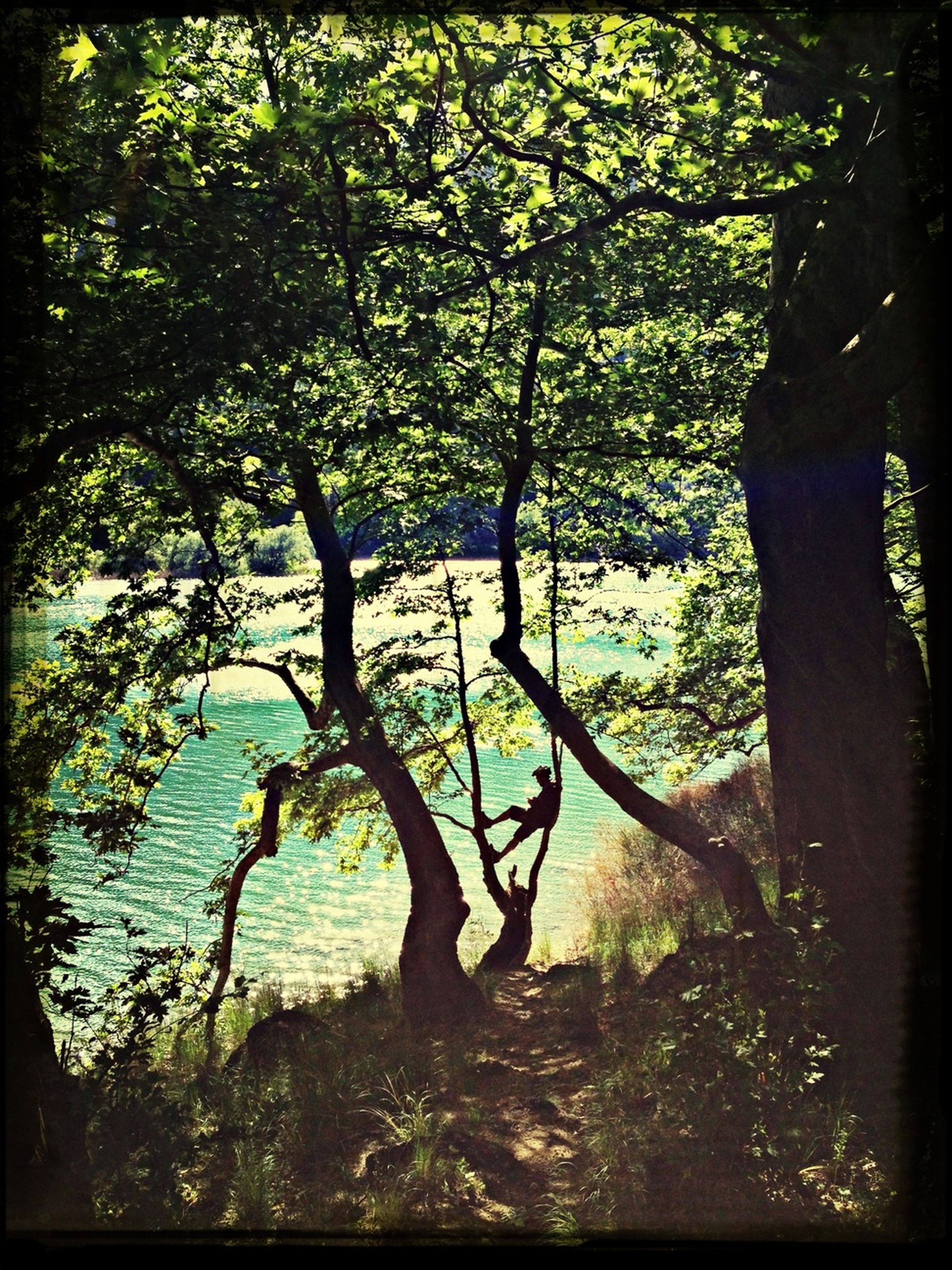 Enjoying Nature Lake Hide And Seek Nature_collection
