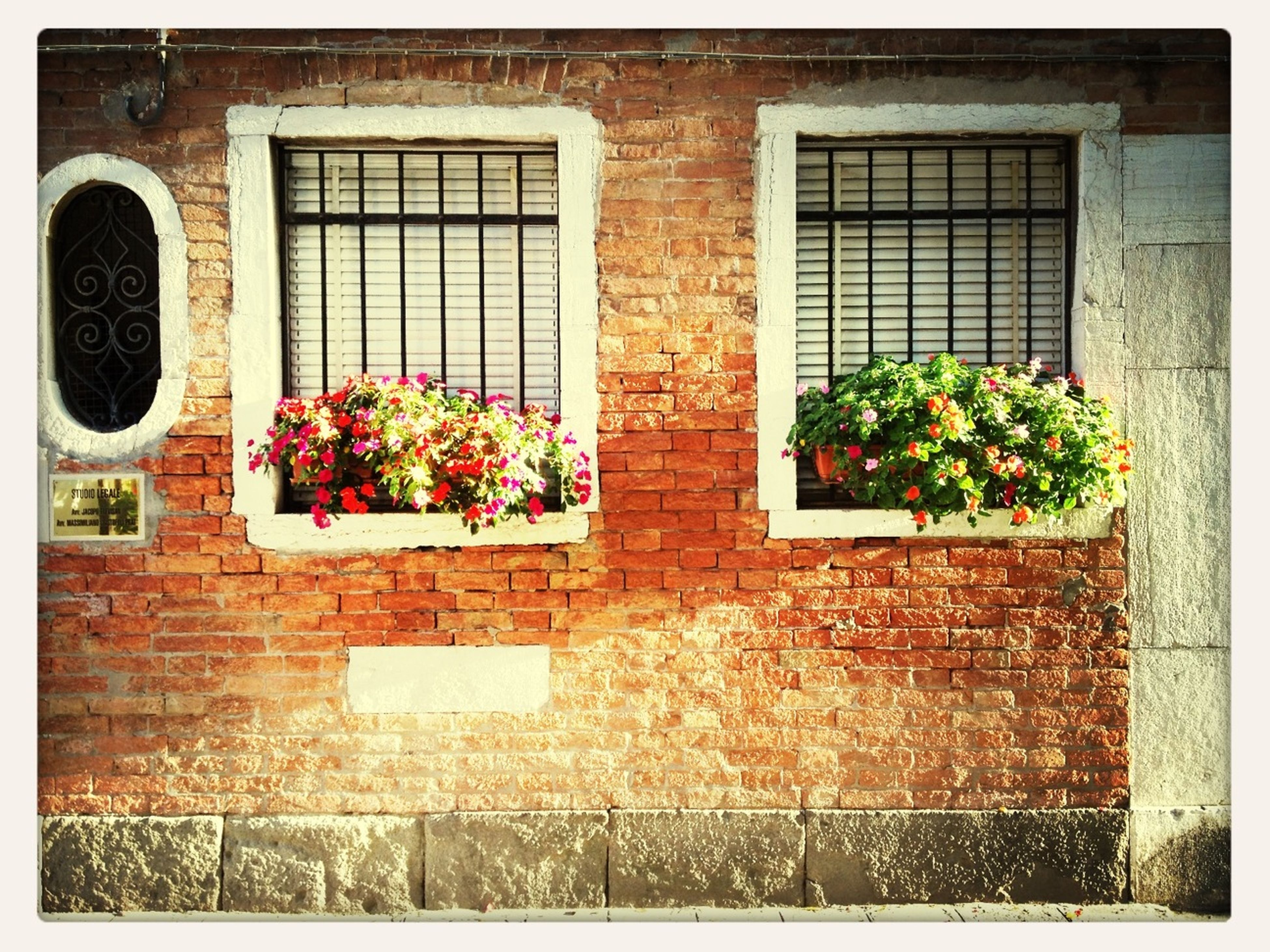 architecture, building exterior, built structure, window, brick wall, transfer print, wall - building feature, plant, wall, auto post production filter, growth, potted plant, house, stone wall, day, outdoors, no people, door, ivy, old