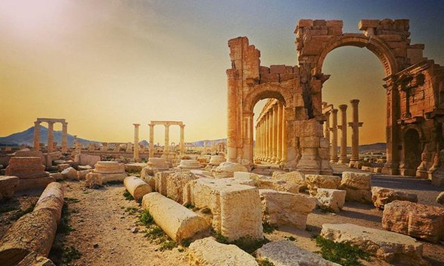 Palmyra's eyes are GREEN!!!!...Welcome back Pearl of the Desert!!! Syrian Army is fighting for Humanity, Civilization!!! Syria  Palmyra Homs Fuckisis Syrianarabarmy