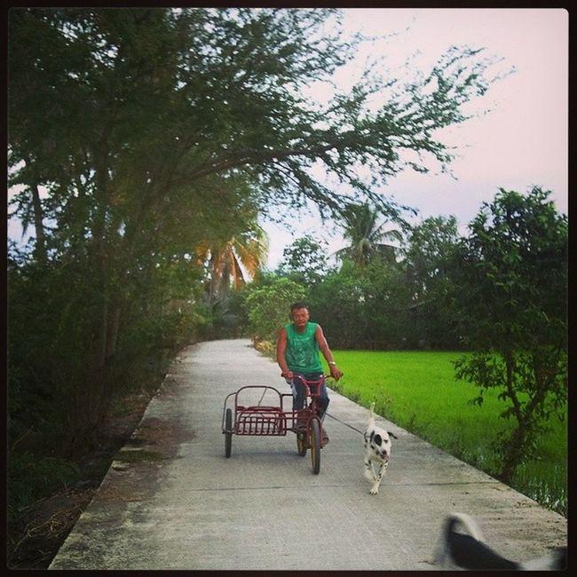 Man's bestfriend. Morningexercise Sundaybonding Naturelover Ricefield BulacanBulacan Philippines @loves_philippines @tuklas_pilipinas @photosharingcommunity