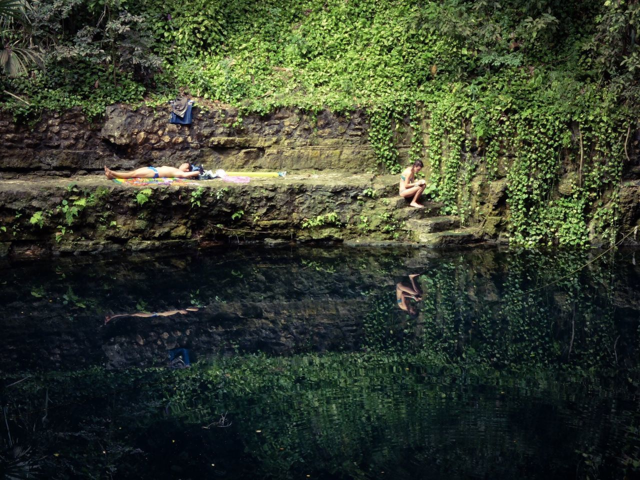 Water Nature Outdoors Day Growth Tranquil Scene Swimming Tree Beauty In Nature Cenote Zací Mexico Yucatan Mexico Peace And Quiet Paradise Reflection