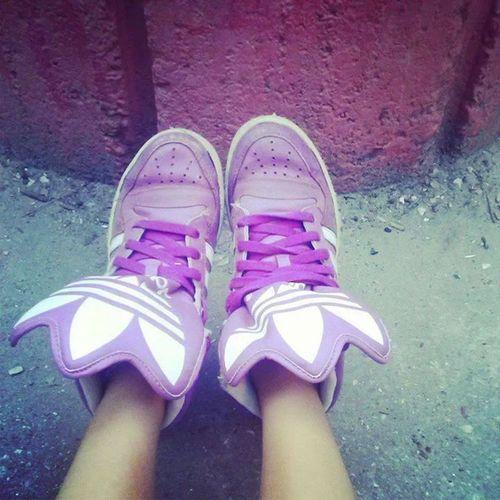 Perfect sneakers Skatergirl Sneakers New Sneakers sneakers