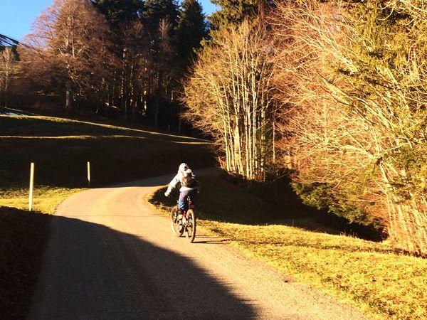 "at Alp Scheidegg, Wald, Switzerland, ""real"" mountain biker bilingual uphill, nature lover, autumn, colors, pristine nature,"