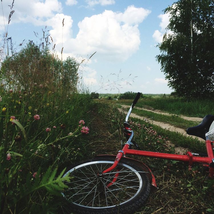 Bicycle Russia Taking Photos Enjoying Life Русское поле Walking Around Hello World Lifestyles Outdoors Place Of Heart Domestic Life Togetherness Sky