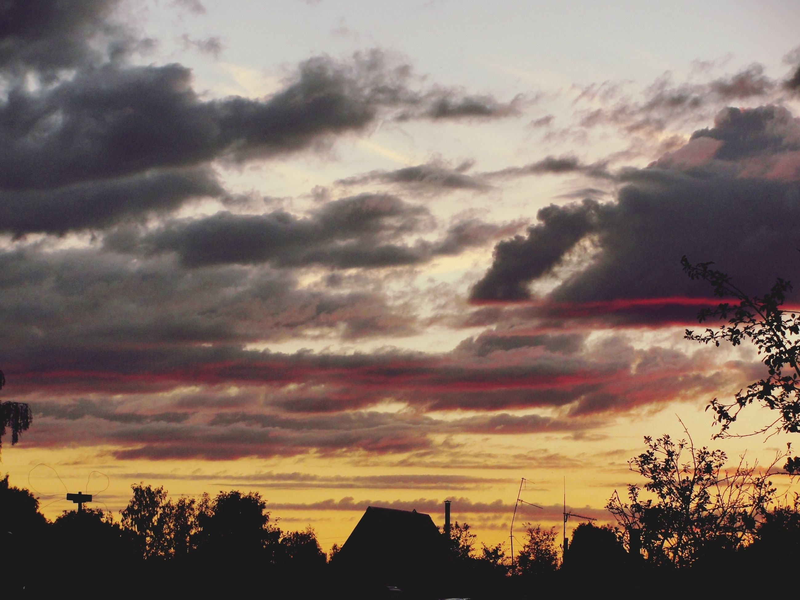 silhouette, sunset, sky, cloud - sky, tree, beauty in nature, scenics, tranquility, low angle view, tranquil scene, cloudy, dramatic sky, nature, cloud, orange color, idyllic, weather, overcast, moody sky, atmospheric mood