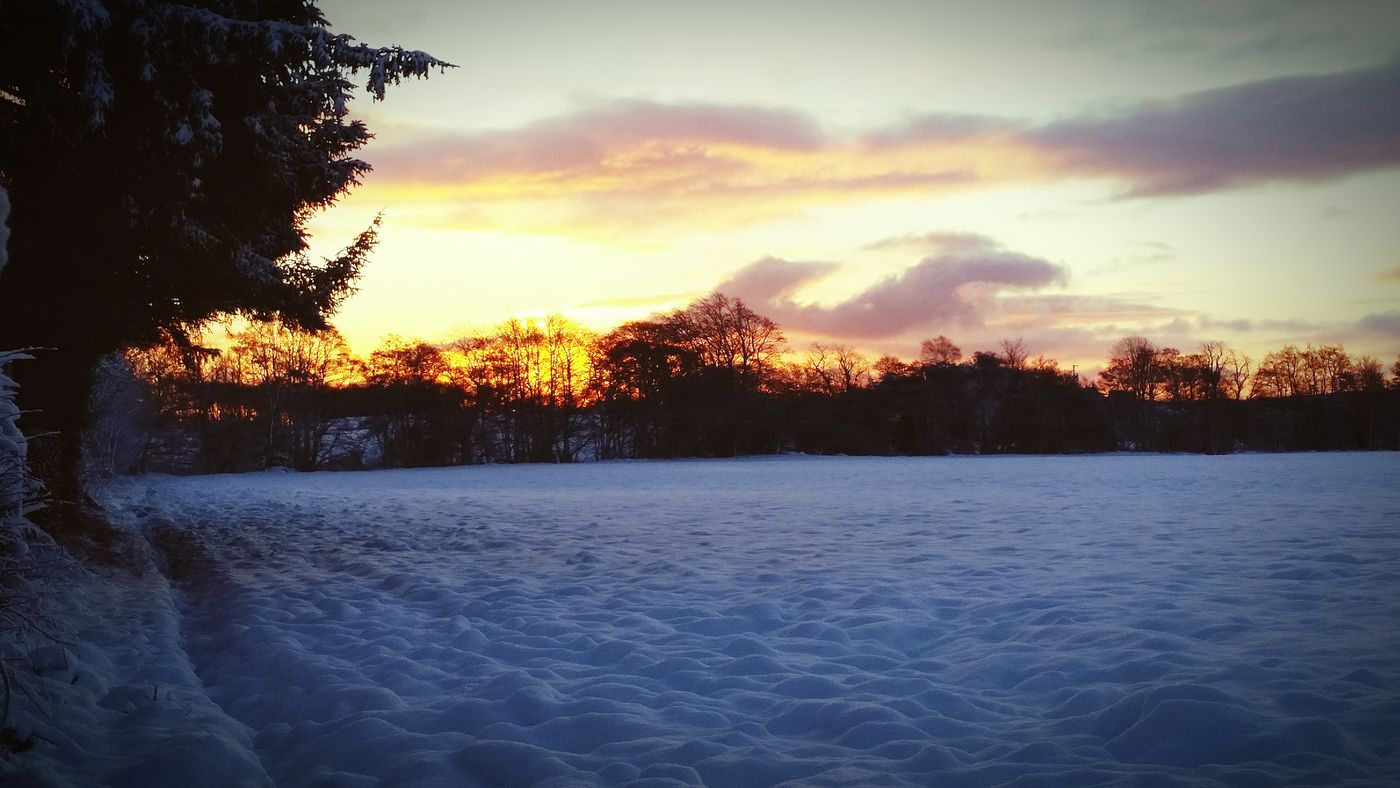 Sunrise Field Snow Scotland
