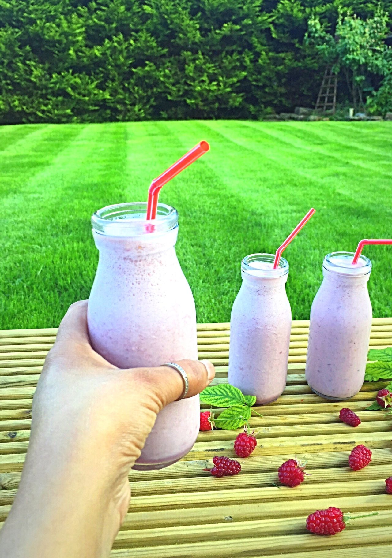 Raspberries Smoothies Smoothie Time  Raspberryseason Homegrown Garden Garden Photography Summer ☀ Healthy Drinks Superfoodsuperboost Delicious Beverage Refreshment Milkshake♥