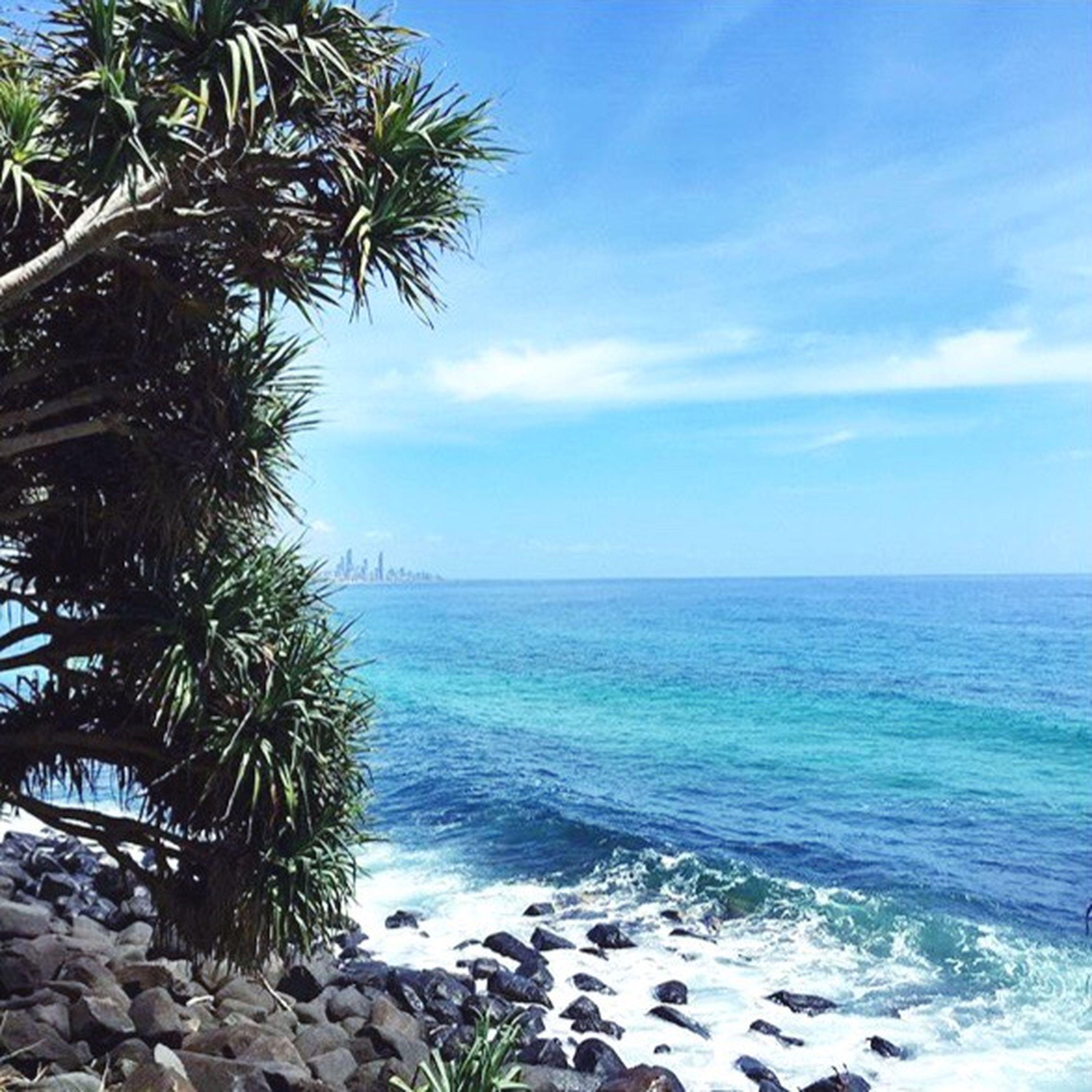 sea, horizon over water, water, beach, tranquil scene, palm tree, scenics, sky, tranquility, beauty in nature, tree, nature, shore, blue, idyllic, cloud, coastline, sand, cloud - sky, rock - object