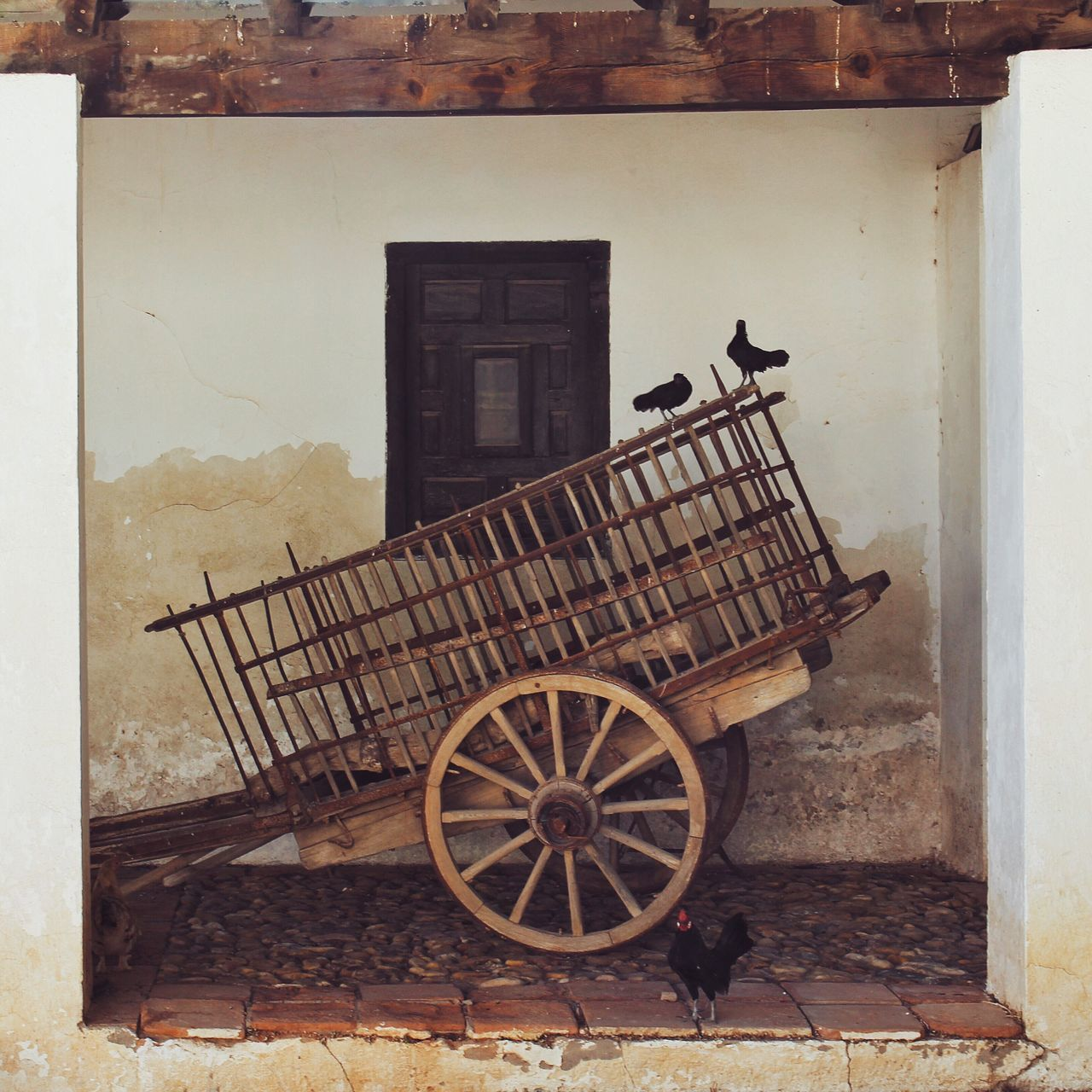 Cart Transportation Building Exterior Mode Of Transport Old-fashioned Horse Cart Wagon Wheel No People History Built Structure Horsedrawn Architecture Carriage Outdoors Day