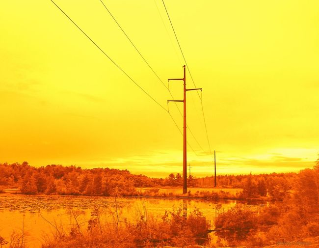 New Jersey Lake Electric Wire Power Lines Reflections In The Water Yellow Glow Trees And Water