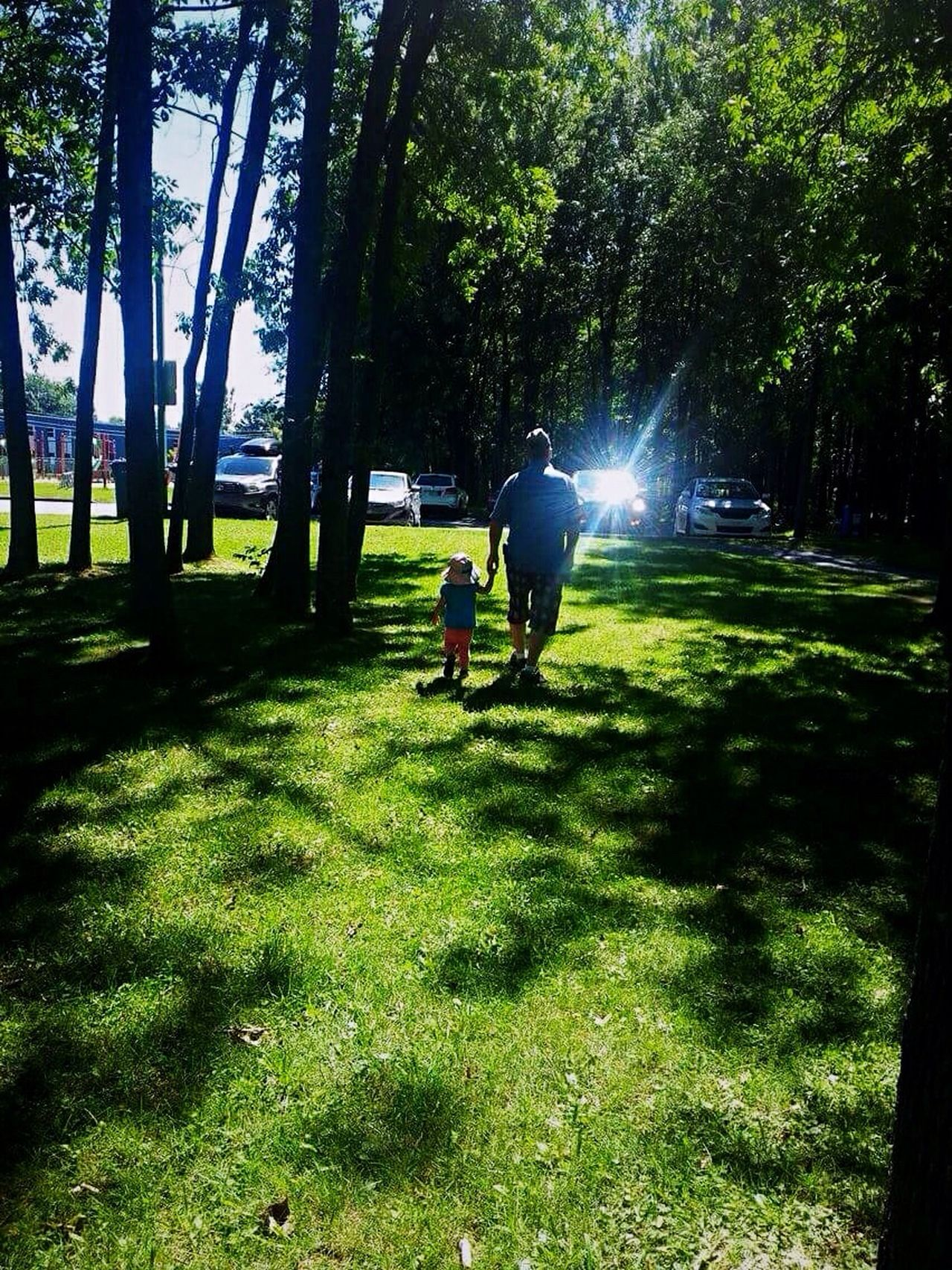 Fatherhood Moments Grass Green Color Sunbeam Lifestyles Summertime 🌞 Enjoying Life Check This Out Relaxing Beautiful Moment💙 Taking Photos Beautiful Moments