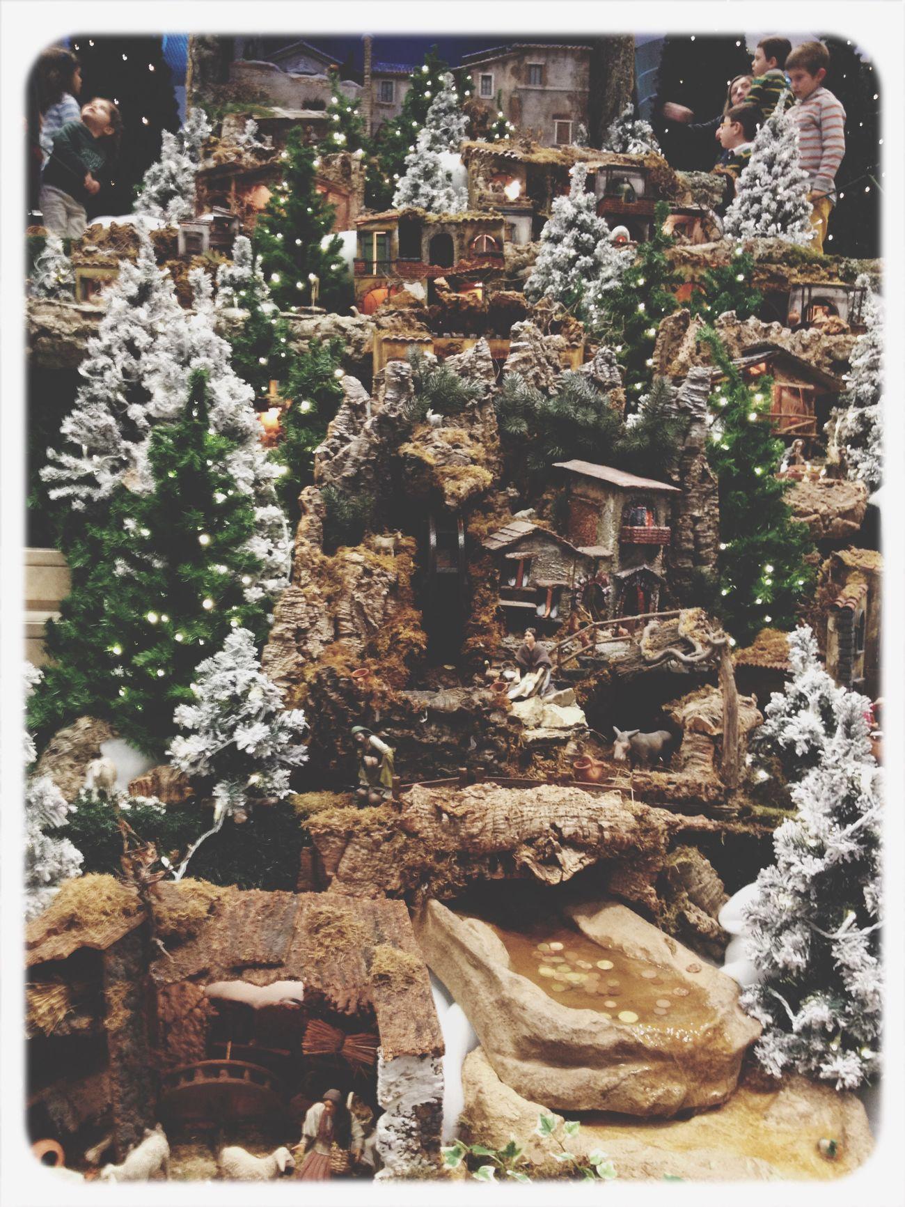 Festive Season Presépio Natal