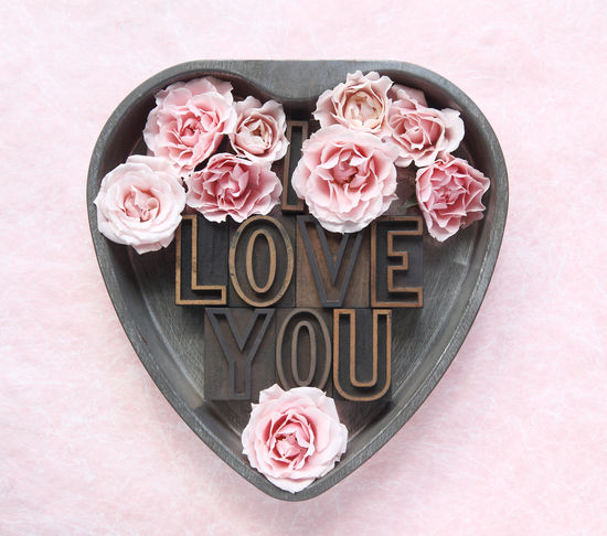Cake Pan Floral Flowers Font Heart I Love You Letters Love Metal Natural Light Overhead View Pale Pink Pastel Colors Petals Romantic Roses Sentimental Text Space Type Typography Valentine's Day  Words