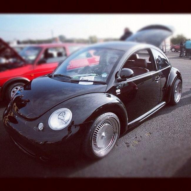 Beetle Motorsport Taking Photos Car Players