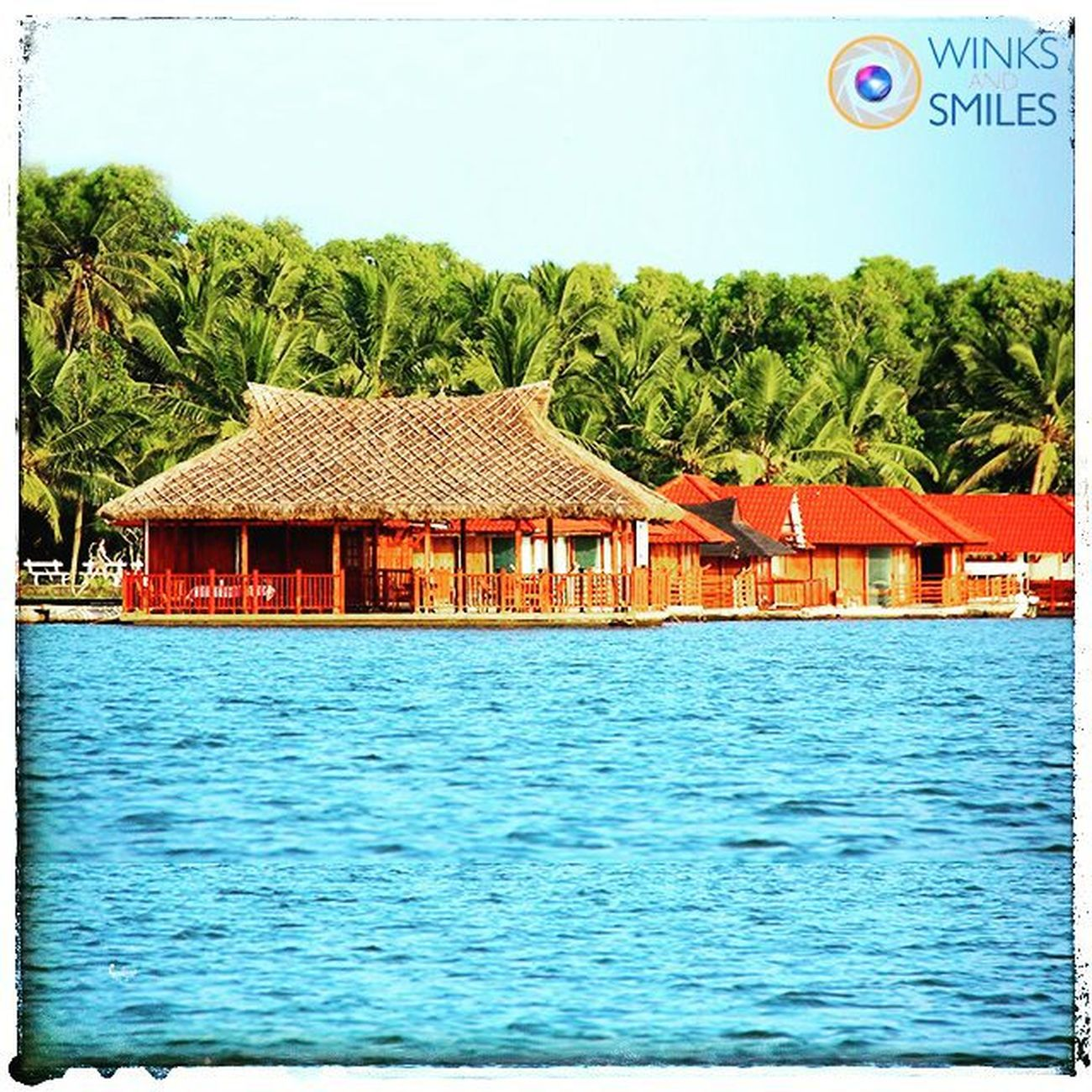 ------------------------------------------------------------------------------------------ 🚣🇮 🇸 🇱 🇦 🇳 🇩 🔸 🇷 🇪 🇸 🇴 🇷 🇹 🇸🚣 ------------------------------------------------------------------------------------------ THIS IS NOT IN CARIBBEAN. IT'S IN OUR OWN GOD'S OWN COUNTRY, KERALA 🌴🌴🌴🌴🌴 Enveloped in serene Kerala backwaters, flanked by the Arabian Sea on the East and the majestic towering Ghats to the West, opening out to the ocean and a dream golden beach, Island Resorts are a tropical paradise. Swaying coconut palms, endless golden sands, the ultramarine of the ocean, emerald backwaters, crimson sunsets and lush green vegetation create a magical ambience around you. Island resorts are the ideal remote getaway location for a quiet holiday in spectacular natural surroundings. You can choose between floating cottages and land cottages for accommodation at charming Kerala ayurveda resort and enjoy a boat cruise along the palm-fringed shores of bewitching backwaters. Kerala GodsOwnCountry Poovar Poovarislandresort Ig_kerala India Nature India Sea Incredibleindia Ayurveda Touristspot Backwaters Sea Landscapephotography Indiabestpic Convexrevolution Followforfollowback Likeforlikes Indianphotographer Photographers_of_india Iger Click_india_click Natgeo natgeotravellerindia instaresorts framesofindia explorethroughcamera
