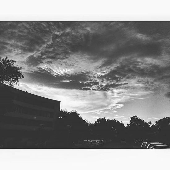 Paradise. Sky Skyporn Clouds Cloudporn Instanature Instagramers Instalike Instagood Instanaturelover Vscobnw Vscoindia Vscogram Vscogramer Vscogood Vscogrid Vscoindia Vscocam Vscophile Wanderlust InstaBnW Blackandwhite POTD Picoftheday Delhiuniversity India indian newdelhi instapic