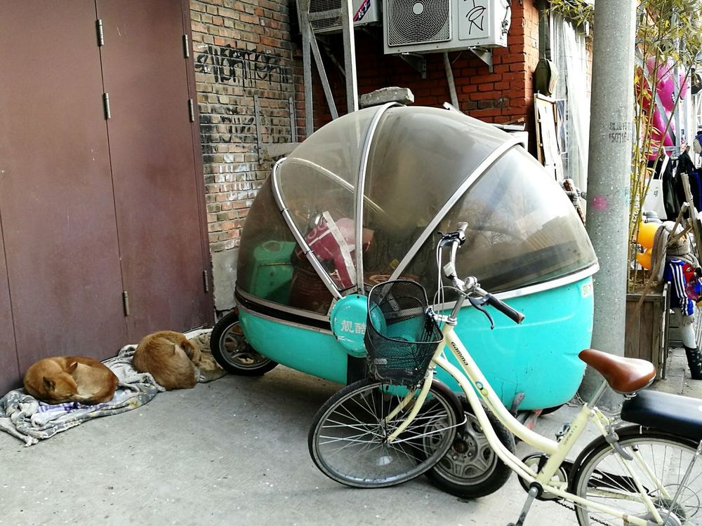 Motorbike Mode Of Transport Old-fashioned No People Transportation China Bejing Motorcycles Dogslife Tired Dogs Sleeping Dogs 798artzone 798 Art Zone 798艺术区 798 District BEIJING北京CHINA中国BEAUTY Beijinglife Chinese Street Photography