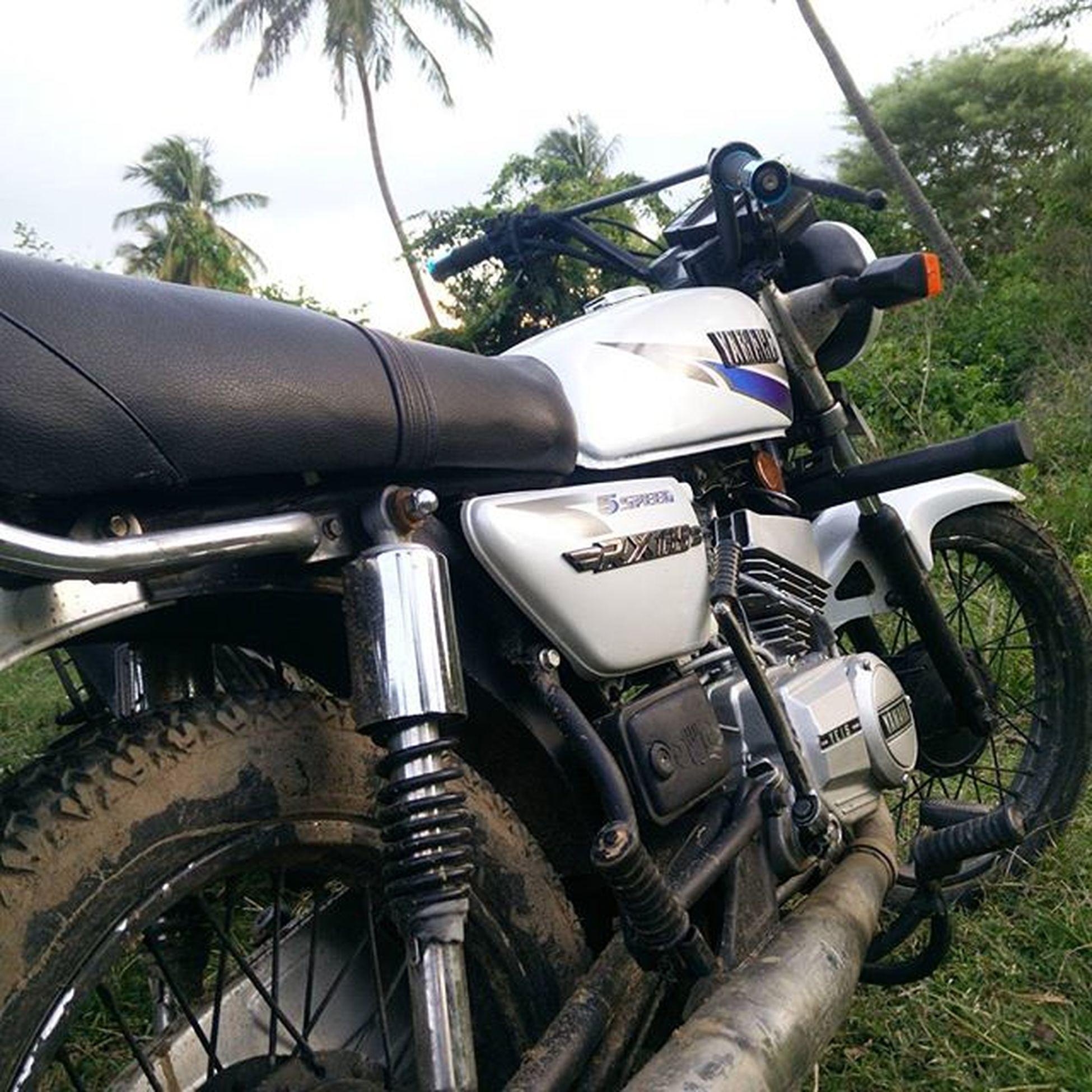 Almost thr the Beastunleashed Save2stroke Yamaharxking Yamaharx135 Port Chamber Catalytic Dirtforlife Vintagewins Allaboutthemuscle😉😉😉