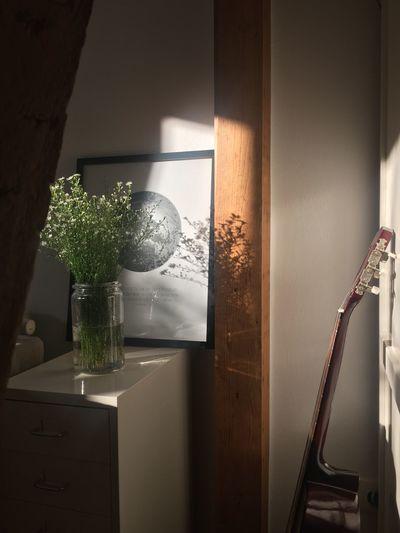 Blumen Decoration Einrichten Gitarre Guitar Home Home Interior Indoors  Living Room Schatten Schattenspiel  Shadow Sunbeam Sunlight Sunshine Vase Wohnen
