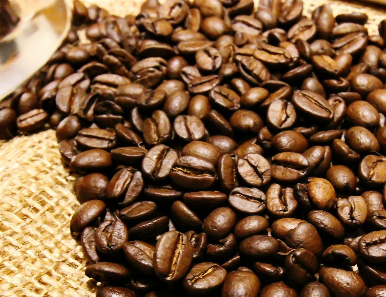 Coffee Seeds Kaffeebohnen Wallpaper This Week On Eyeem Showcase: February Closeupshot