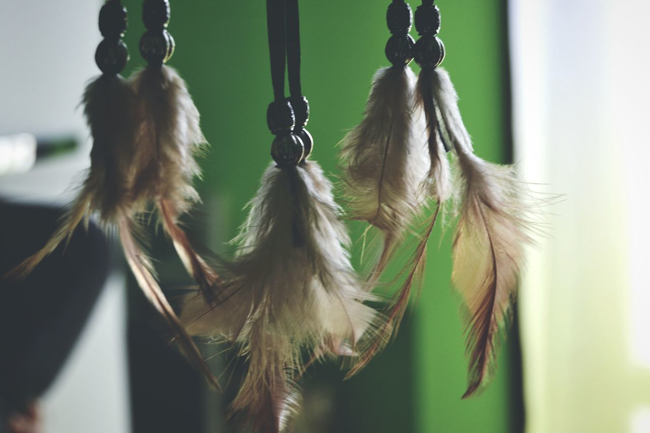 hanging, close-up, focus on foreground, no people, day, feather, outdoors