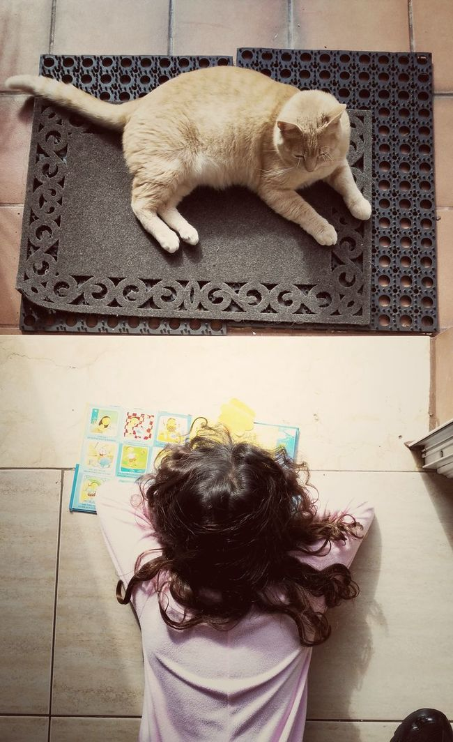 The Week On EyeEm Cat Cat Lovers Children Reading Sunrise That's Me Relaxing Enjoying Life Life Freedom Happiness