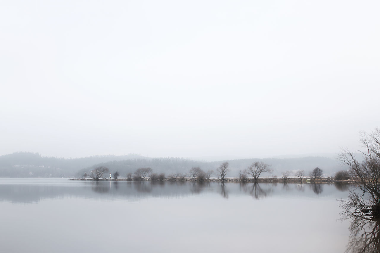 Exceptional Photographs Water Nature Tree Trees Tranquility Tranquil Scene Beauty In Nature Reflection The Week Of Eyeem Outdoors Lake Scenics Landscape Alingsås Reflections Lake In The City Mist Misty Morning Fog Foggy EyeEm Masterclass Simplicity Miles Away If Trees Could Speak