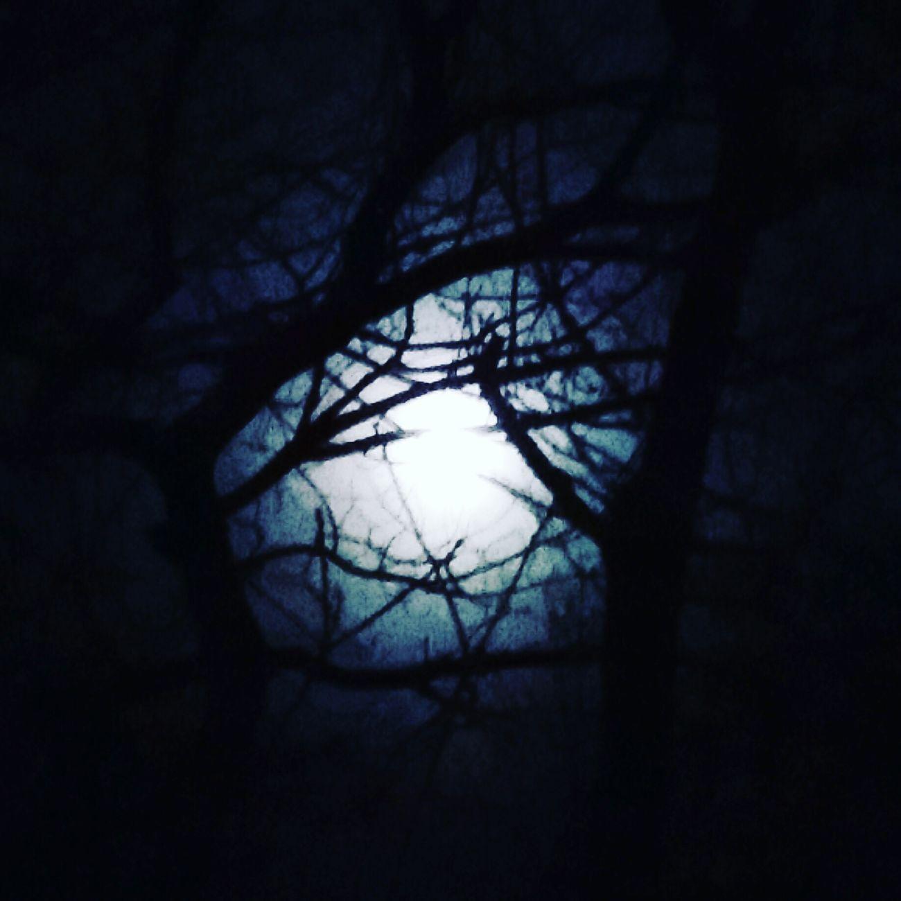 Fullmoon Wolf Moon Old Moon