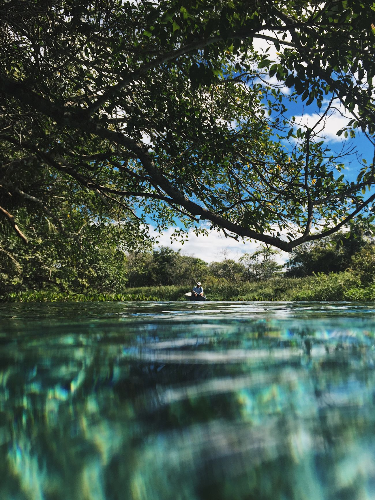 Tree Nature Water Outdoors Reflection Scenics Bonito Brazil Sucuri Crystal Clear Waters Boat Turism Amazing View Underwater Nature Bonito - MS Matogrosso The Great Outdoors - 2017 EyeEm Awards