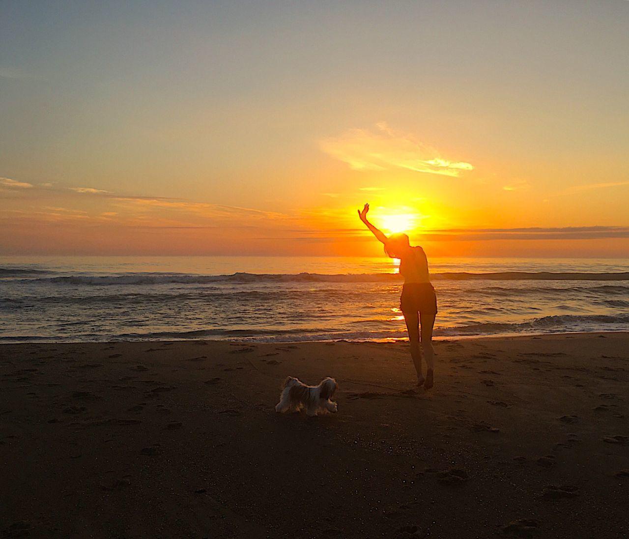 👸🐶😍 Love Wife Dog Beach Santacatarina  Praiadoburaco Balneariocamboriu Itajaí Brasil Brazil Shi Tzu Sunset