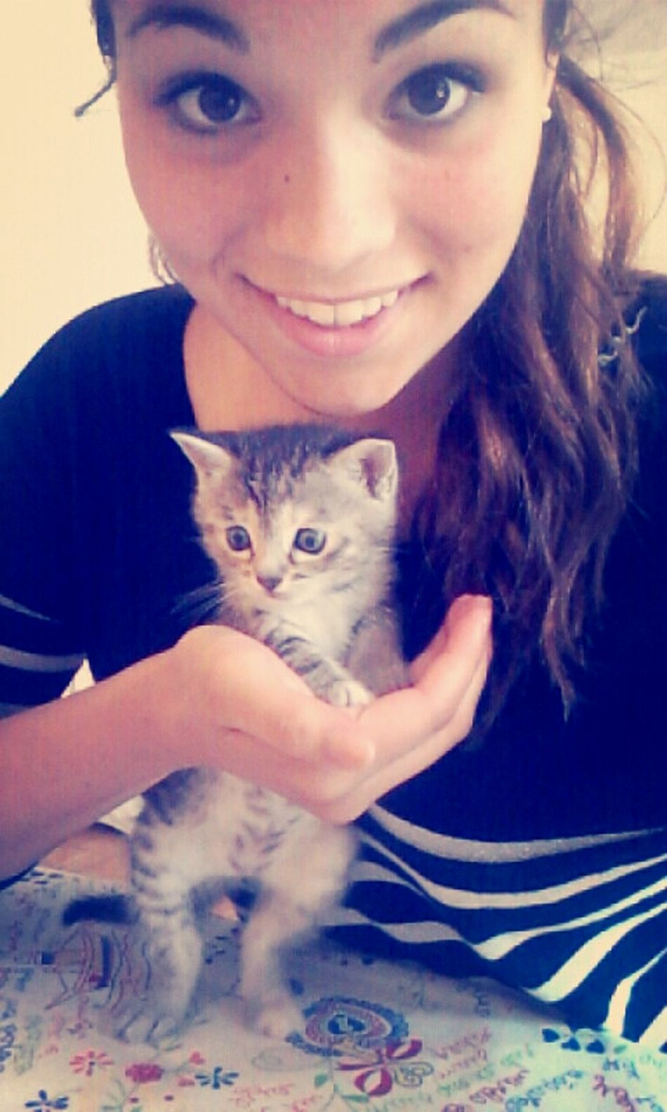 Crapouillette. Cat Lovers Cat Kattycat