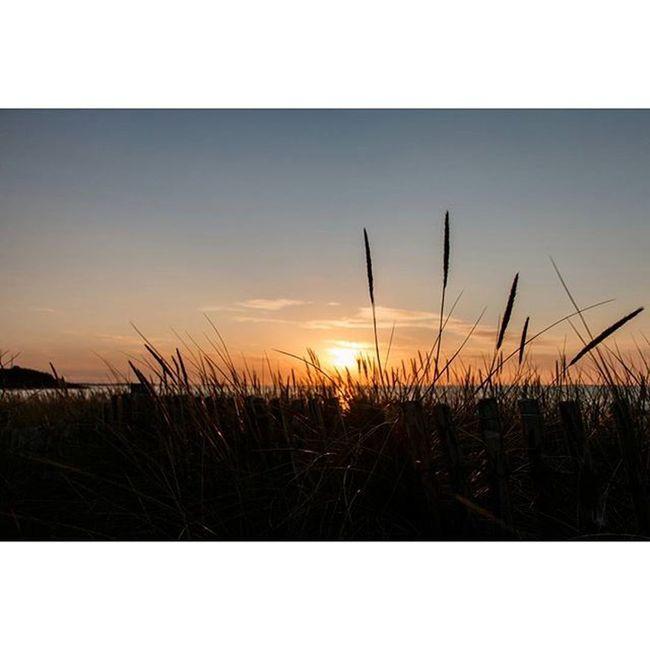 Sunset in L'Armor Pleubian Sunset Sonnenuntergang Fischer Sonne Pleubian Ocean France Brittany Bretagne Sillondetalbert