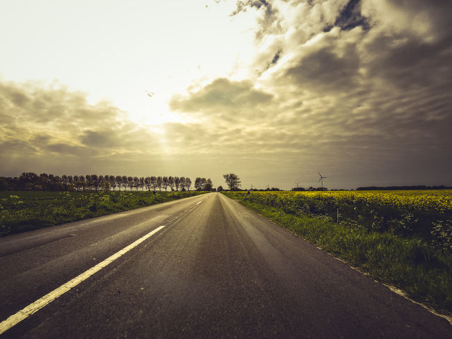 Atmosphere Atmospheric Mood Cloud Cloud - Sky Clouds Clouds And Sky Cloudy Country Road Countryside Field Landscape Leading Outdoors Perspective Road Roadtrip Sky Street The Way Forward Tranquil Scene Tranquility Travel Traveling Tree Luxmom